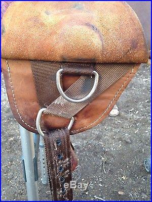 Circle Y Bob Marshall Treeless 16 inches Saddle