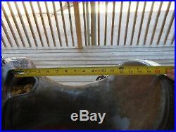 Circle y equitation saddle