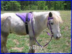 MINIATURE HORSE / SM PONY BAREBACK SADDLE PAD SET ROYAL PURPLE